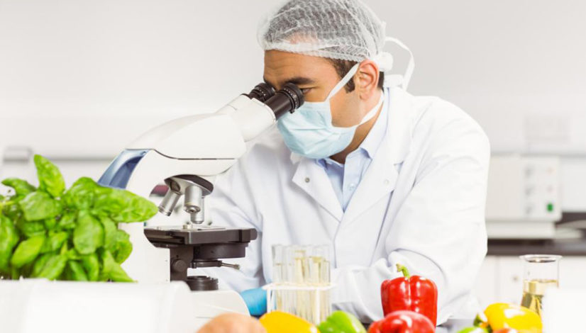 A food scientist working in a lab with a microscope